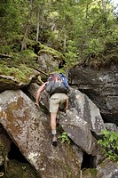 Ice Gulch   Hikers make their way along the Ice Gulch Path during the summer months     Located in the White Mountains, New Hampshire USA  Notes   Ice...