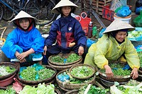 Vietnam, Hoi An, market, people,