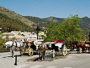 Horse and Carriages, in Mijas, Costa del Sol, Spain