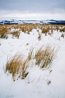 Scotland, Scottish Borders, Carter Bar  Snow on high land near Carter Bar on the English Border, looking towards the rolling hills of Scotland
