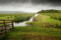 managed wetlands at the Ynyshir RSPB royal society for protection of birds,  nature reserve in the Dyfi estuary biosphere, Ceredigion Wales UK
