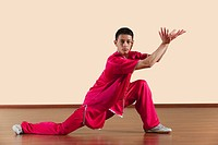 Kung Fu, Tongbeiquan, Baiyuan xianguo, Young man practicing martial arts