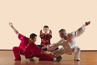 Kung Fu, Changquan, Pubu cuanzhang, Mabu shuang tuizhang, Long Fist Style, Persons practicing martial arts