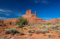 USA, Utah, Valley of the Gods, desert scenery
