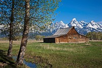 USA, Wyoming, Mormone Barn, in background Treton mountains