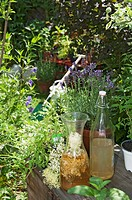 Austria, Salzburger Land, Herb garden, bottle and carafe in foreground