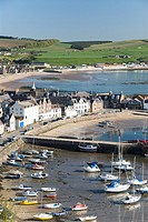 Harbour, Stonehaven, Highlands, Scotland, United Kingdom, Europe