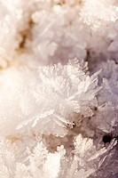 Scandinavian Peninsula, Sweden, Skåne, Småland, View of snowflakes, close_up