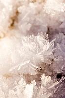 Scandinavian Peninsula, Sweden, Skåne, Småland, View of snowflakes, close_up