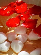 Close_up of rose petals floating in a bowl