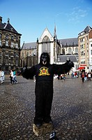 Netherlands, North Holland, Amsterdam  Street performer dressed as a Gorilla, outside Nieuwe Kerk New Church near the Royal Palace and Dam square in A...