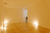 Instituto Cultural Inhotim, contemporary art museum with nine galleries and several installations by renowned Brazilian and international artists. Cit...