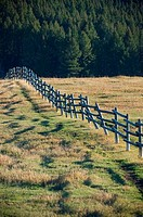 Fence in a pasture, Bozeman, Montana, USA