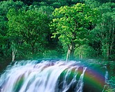 Green trees and waterfall, computer graphic