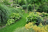 Grass path in a perennial garden