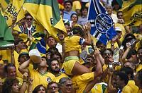Soccer fans from Brasil
