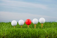 golf ball and tee in grass