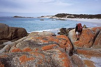 Bushwalker on Lichen covered Boulders, Bay of Fires Walk, Tasmania, Australia
