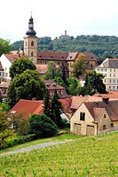 View over vineyard to St. James´ Church, Bamberg, Upper Franconia, Bavaria, Germany