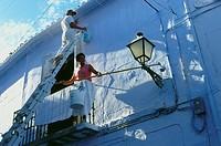 Whitewashing a house in Frigliana, white village, Province Malaga, Andalusia, Spain