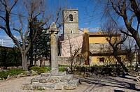El Olivar, La Alcarria, Guadalajara province, Castilla-La Mancha, Spain