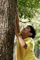 Young boy trying to climb a tree