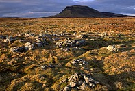 England, North Yorkshire, Yorkshire Dales National Park, Limestone outcrops in moorland dominated by the peak of Pen_y_ghent.