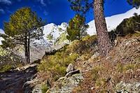 Camino del Puerto del Peón en la Sierra de Gredos  El Hornillo  Castilla León  España