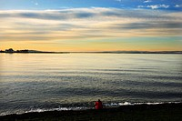 Scotland, City of Edinburgh, Edinburgh, A view out to sea from the beach on the Firth of Forth at sunset
