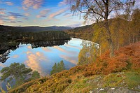 Scotland, Highland, Glen Affric, The sky and autumn colours reflected in a loch in Glen Affric, described as 'the most beautiful glen in Scotland'