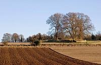 England, Gloucestershire, Rodmarton, Windmill Tump Long Barrow Rodmarton Long Barrow, a large Neolithic long barrow near Rodmarton.
