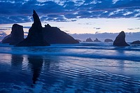 USA, Oregon, Coos County, Bandon State Park, sea stacks, surf, and beach at sunset, September