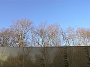 USA, Washington DC, Vietnam Veterans Memorial under trees and blue sky, also known as The Wall  Designed by Maya Ying Lin and completed in 1982