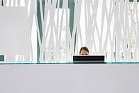 Businesswoman working on computer at reception desk