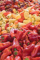 assorted colors of peppers