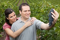 Couple looking at grapes in vineyard