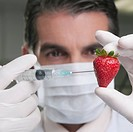 Lab technician injecting into a strawberry
