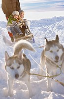 Winter tour with dog sledge