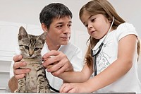 Girl with a vet examining a cat