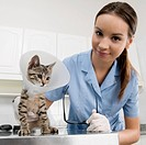 Female vet examining a cat