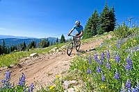 Man mountain biking The Elk Trail at Brundage Mountain Ski Resort near the town of McCall in the Salmon River Mountains of central Idaho USA