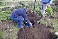 teenage boy digging hole in garden to bury pet cat