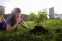 Woman looking at aspen sapling on grass