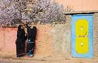 Morocco - Chatting Berber women in the village of Adaï, near the town of Tafraoute in the Ameln Valley  Beginning of February at the blossom of the al...