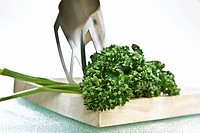 Curly parsley with mezzaluna on chopping board