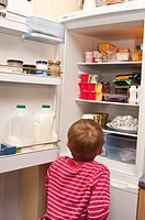 A  picture of a 6 year old boy raiding the fridge in the uk