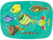 Different types of fish swimming together