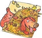 A dog playing in a pile of autumn leaves (thumbnail)