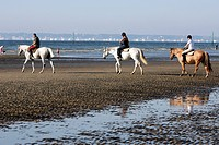 HORSEBACK RIDING ON THE BEACH, THE LAIS DE MER EQUESTRIAN CENTER AND RIDING SCHOOL, DEAUVILLE, CALVADOS 14, NORMANDY, FRANCE