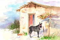 Animal, Watercolor painting of a donkey standing near a hut
